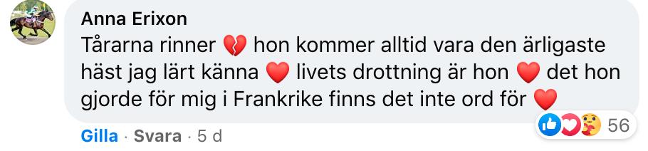 Anna Erixons fina ord om Ladyofthelake på stall Nyströms Facebooksida