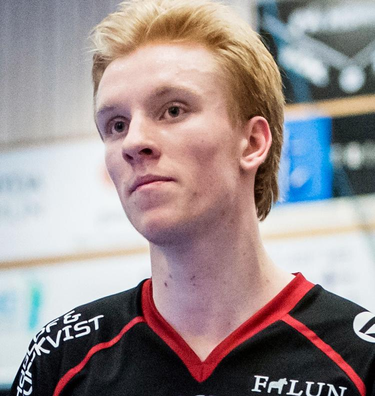 Alexander Rudd en av nyckelspelarna i Sverige.
