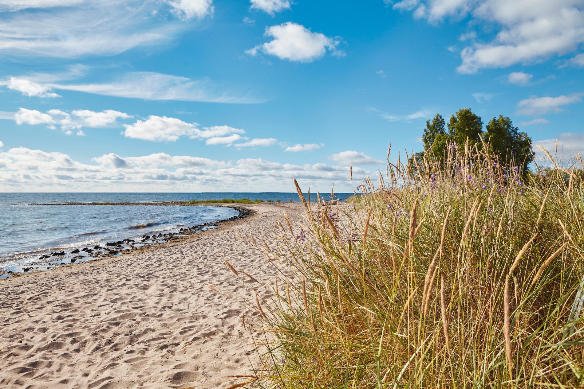 Besök Ljugarn och bada i havet eller gå på restaurang.