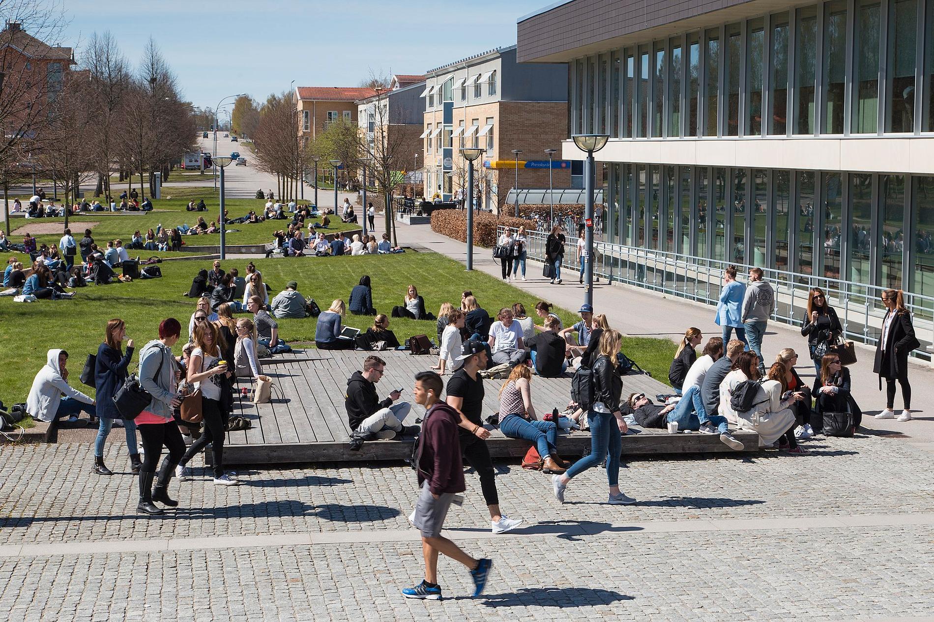 Studenter på Linnéuniversitetet 2016. Ett stort antal misstänkta fall av deltavarianten i Kronoborg har spårats till universitetet.