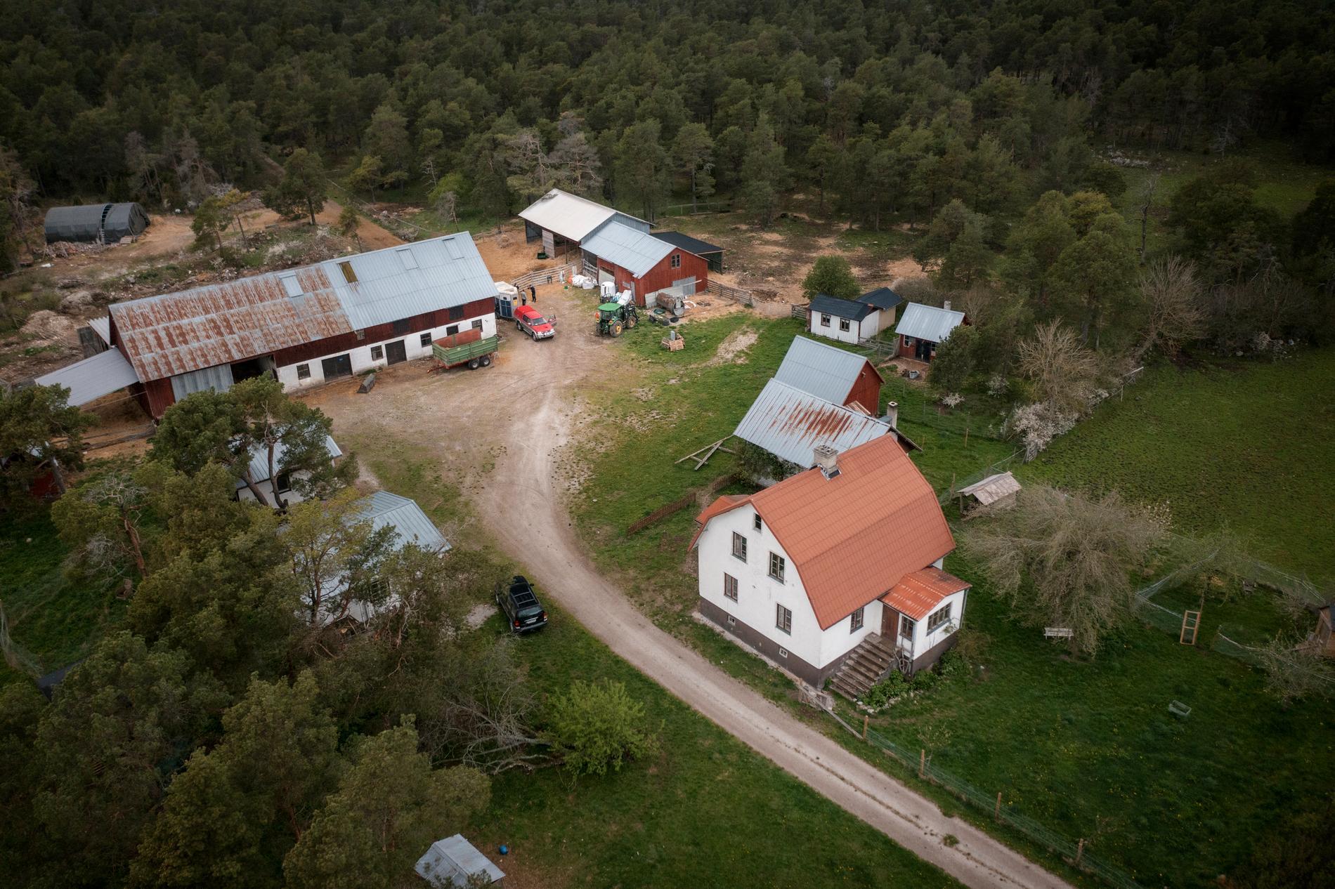 Den stora gården på Gotland skulle bli paradiset för gamla och dumpade lantbruksdjur. I dag är den helt tyst och öde.