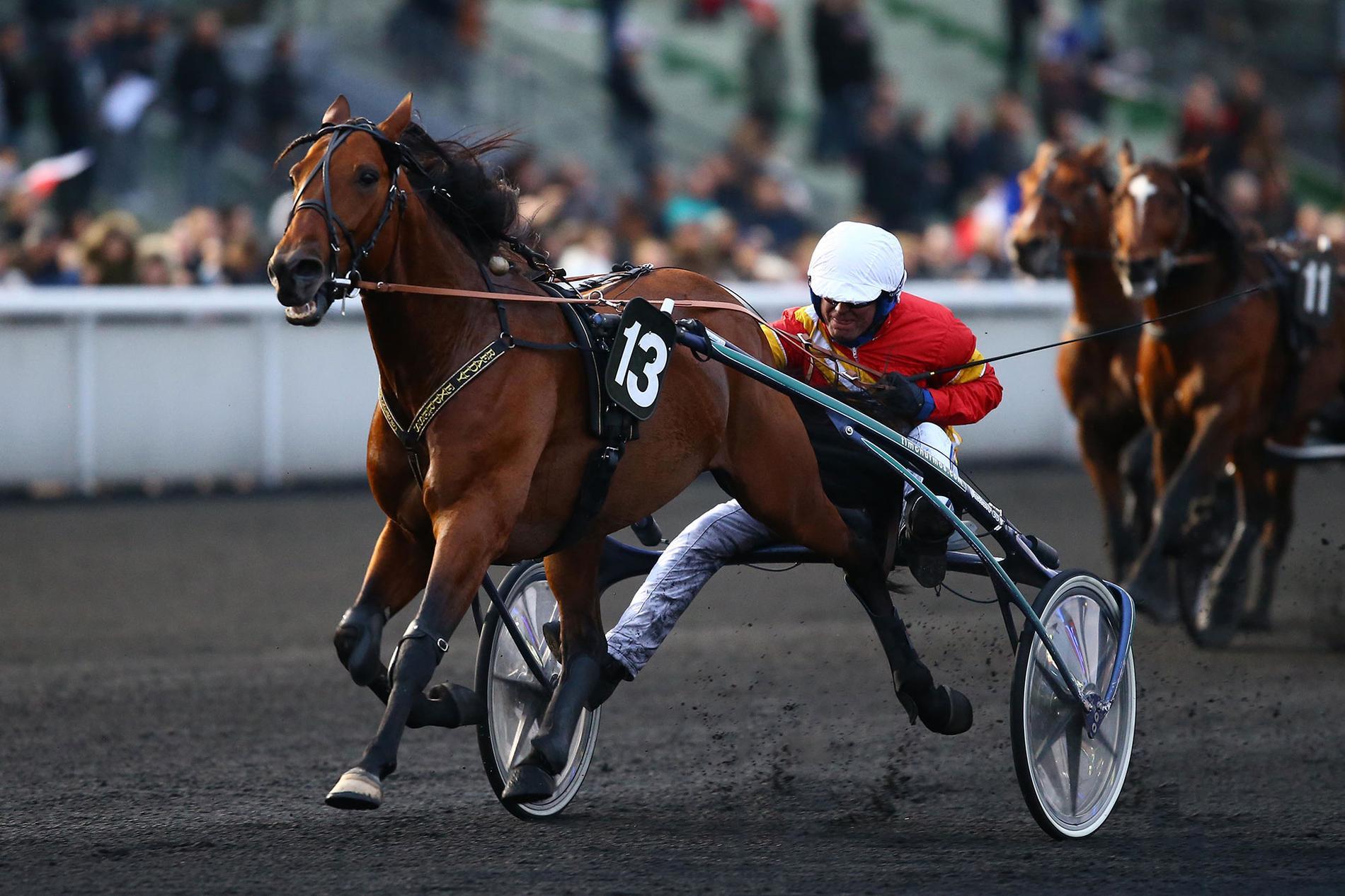 Readly Express får välförtjänta segerklappar av kusken Björn Goop efter segern i Prix Tenor de Baune. Nu väntar uppladdning i Frankrike, på Goops gård, inför det stora slaget i slutet av januari.