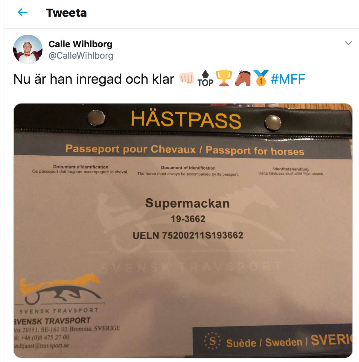 Calle Wihlborg meddelade på Twitter att han döpt hästen efter Markus Rosenberg