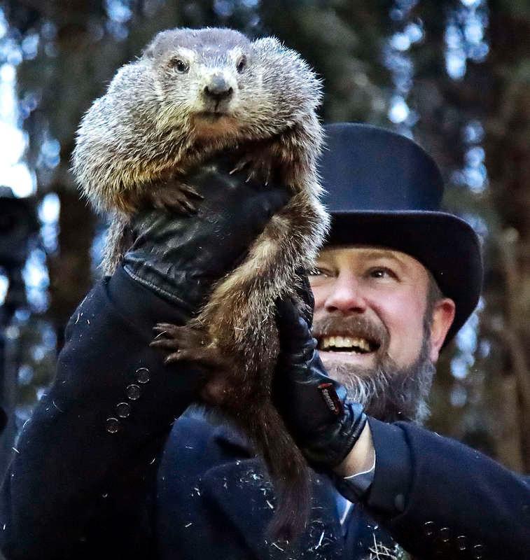 UT I LJUSET Murmeldjuret Phil gjorde entré inför publiken i Punxsutawney – utan att bli rädd för sin egen skugga.