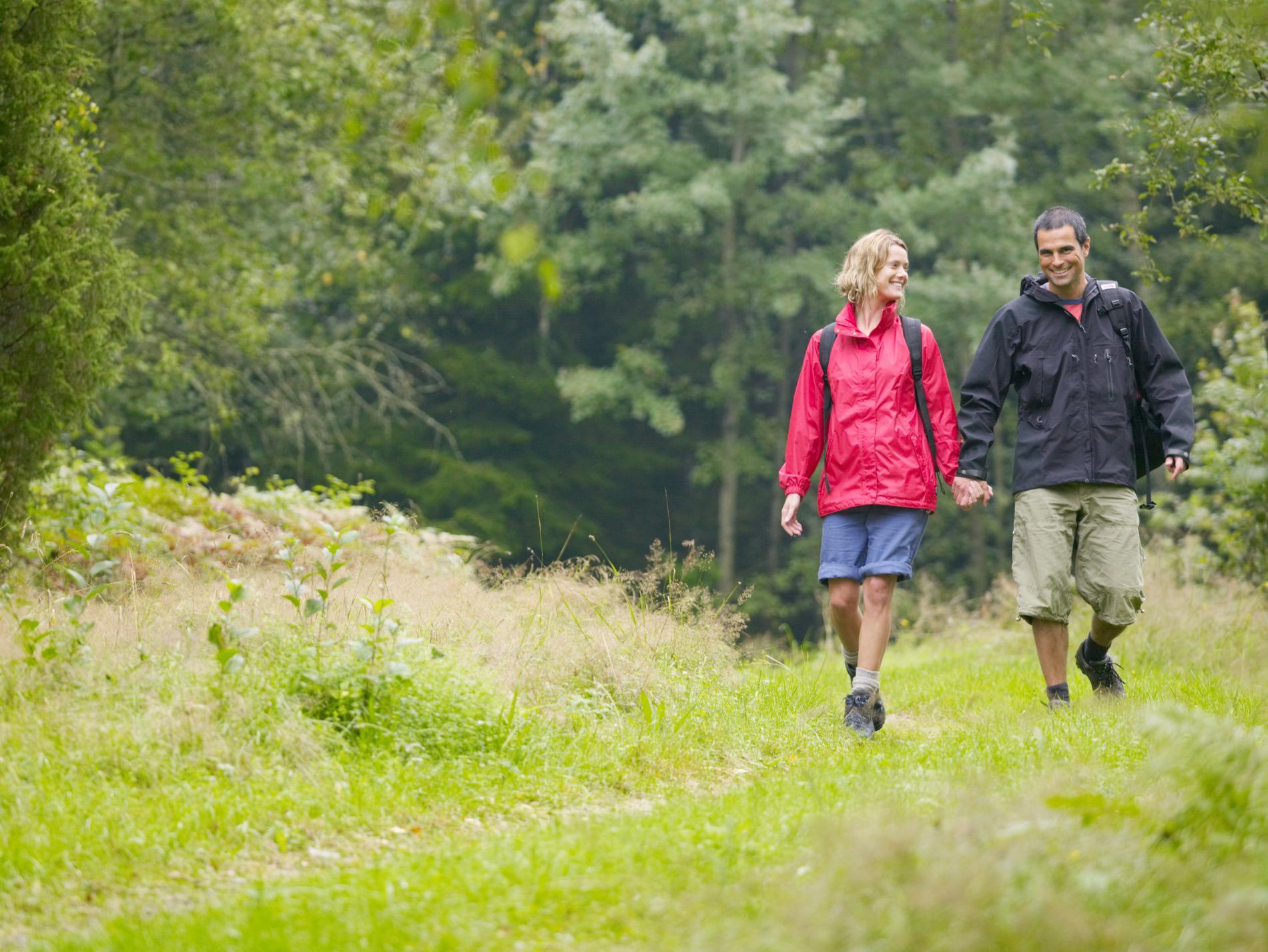 På vandring. Upptäck Sveriges fina naturreservat.