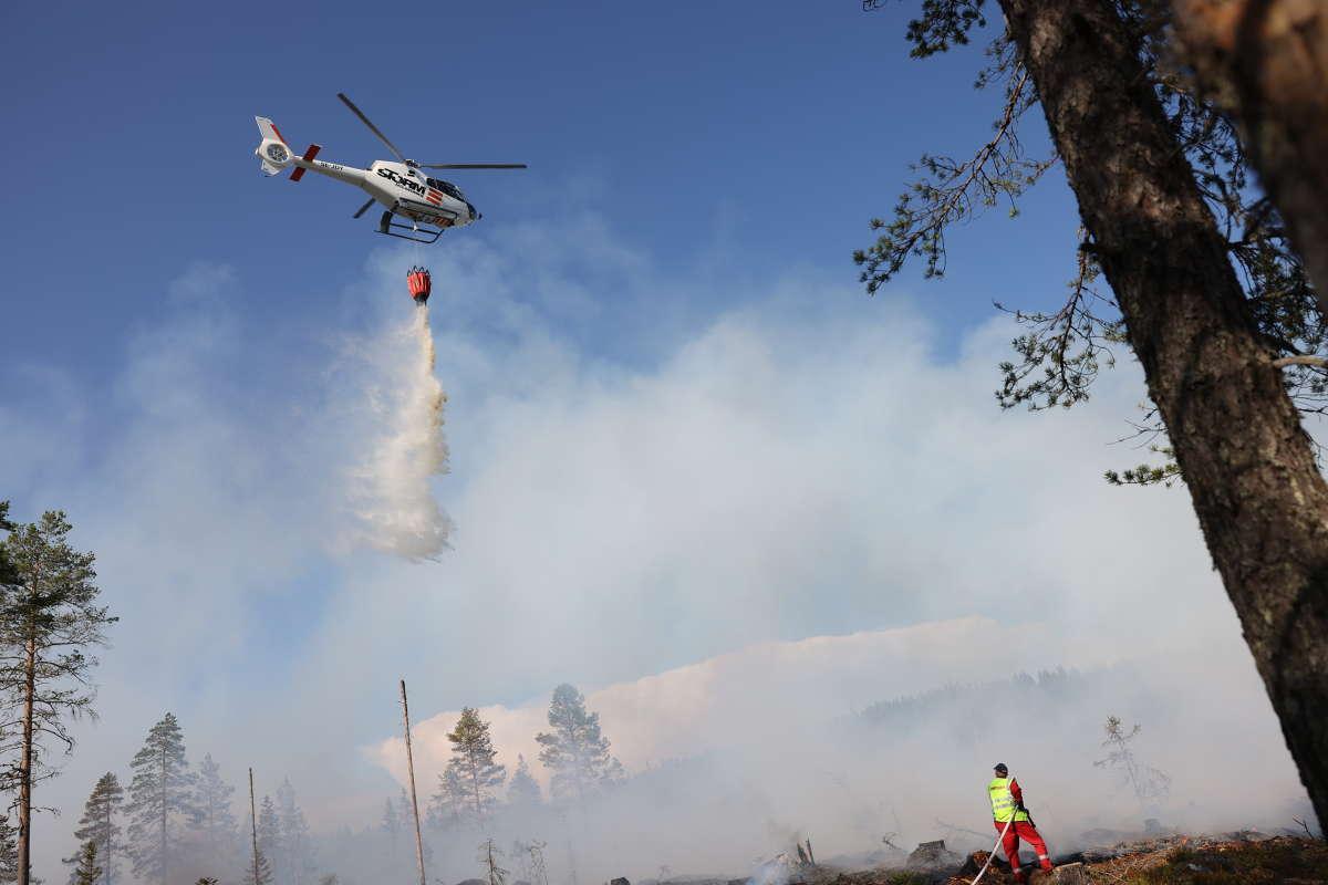 Helikopter vattenbombar.