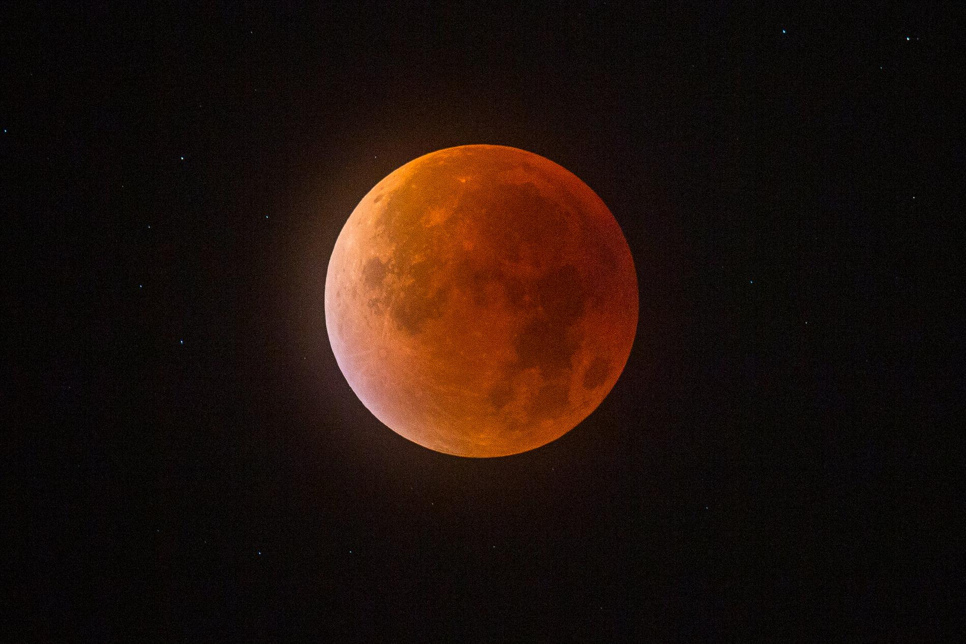Tidigt på morgonen den 21 januari kan en blodmåne ses i Sverige om vädret tillåter. Arkivbild.