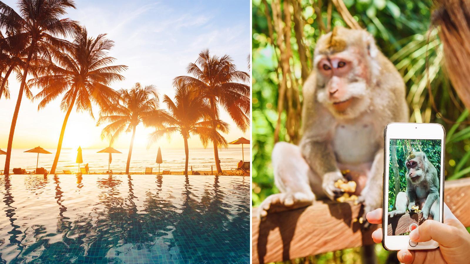 Vid River Pool i Ayana, Bali, får du inte längre använda mobiltelefoner eller kameror klockan 9–17.