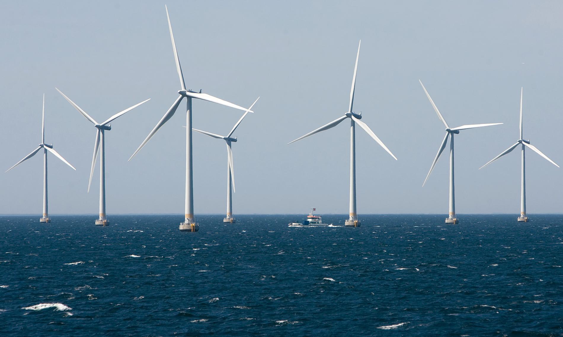 Vindkraftsparken Lillgrund i Öresund är en av de få anläggningar som än så länge finns i svenska vatten. Arkivbild.