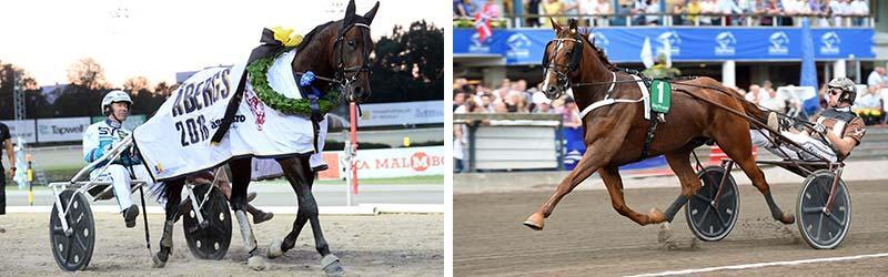 Daniel Redéns två stjärnor Propulsion och Västerbo HighFlyer kan ställas mot varandra i ett skiljeheat i lördagens storlopp Åby Stora Pris
