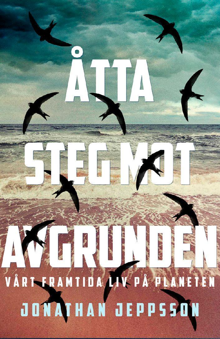 """""""Vi måste börja inse att det redan är över."""" Det är ett av många drabbande citat i Jonathan Jeppssons bok """"Åtta steg mot avgrunden""""."""