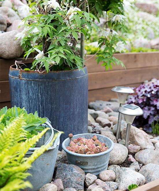 Zinkkrukor mot sten tillsammans med grönt ger en skön harmoni.