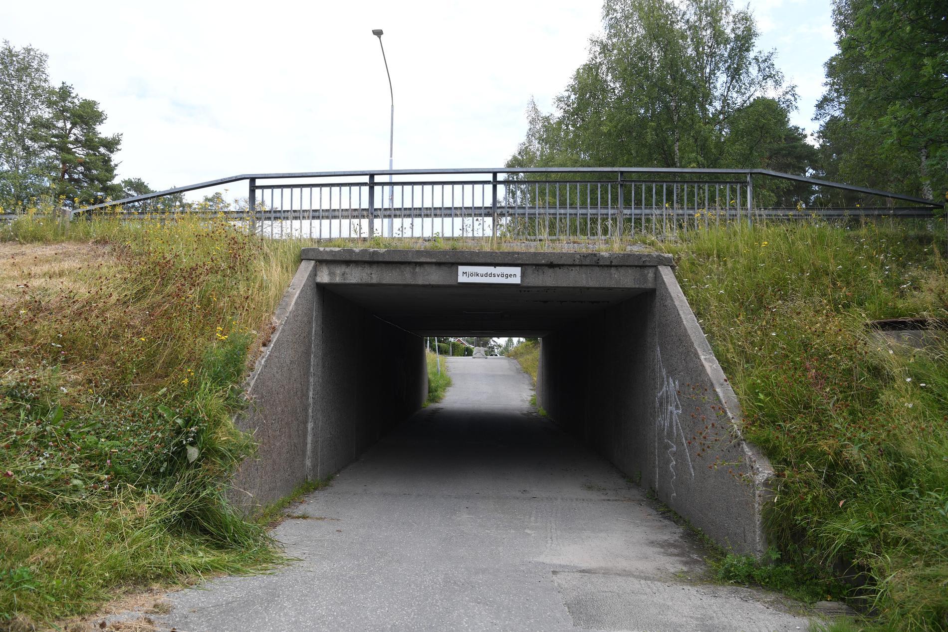 Enligt uppgifter till Aftonbladet har polisen hittat en pistol i en gångtunnel ungefär 100 meter från brottsplatsen.