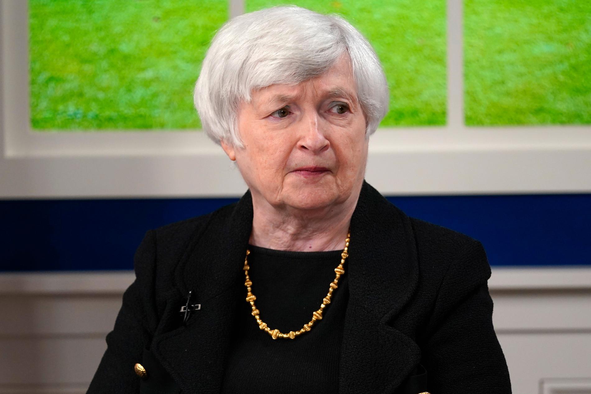 Finansminister Janet Yellen är skeptisk.