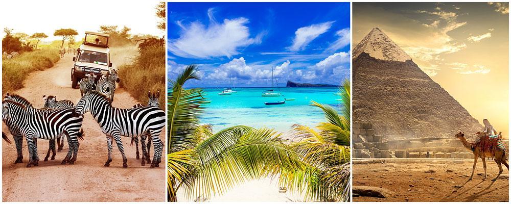 Safari, Mauritius och Egypten är upplevelser och länder som är populära 2019.