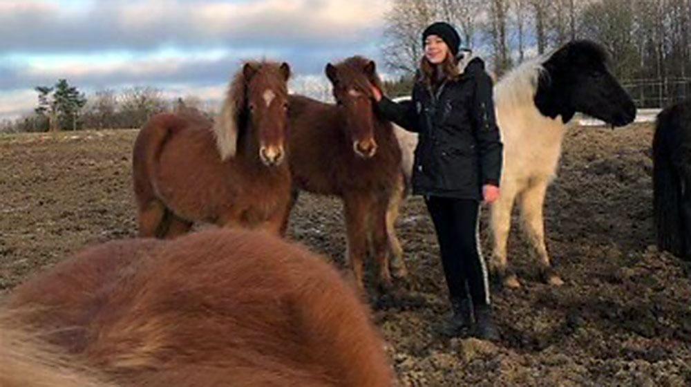 Jennie har själv hästar så hon vet hur man tar hand om dem. Här i hagen med hästarna Djörf, Stelpa och Gæsa från Åboda.
