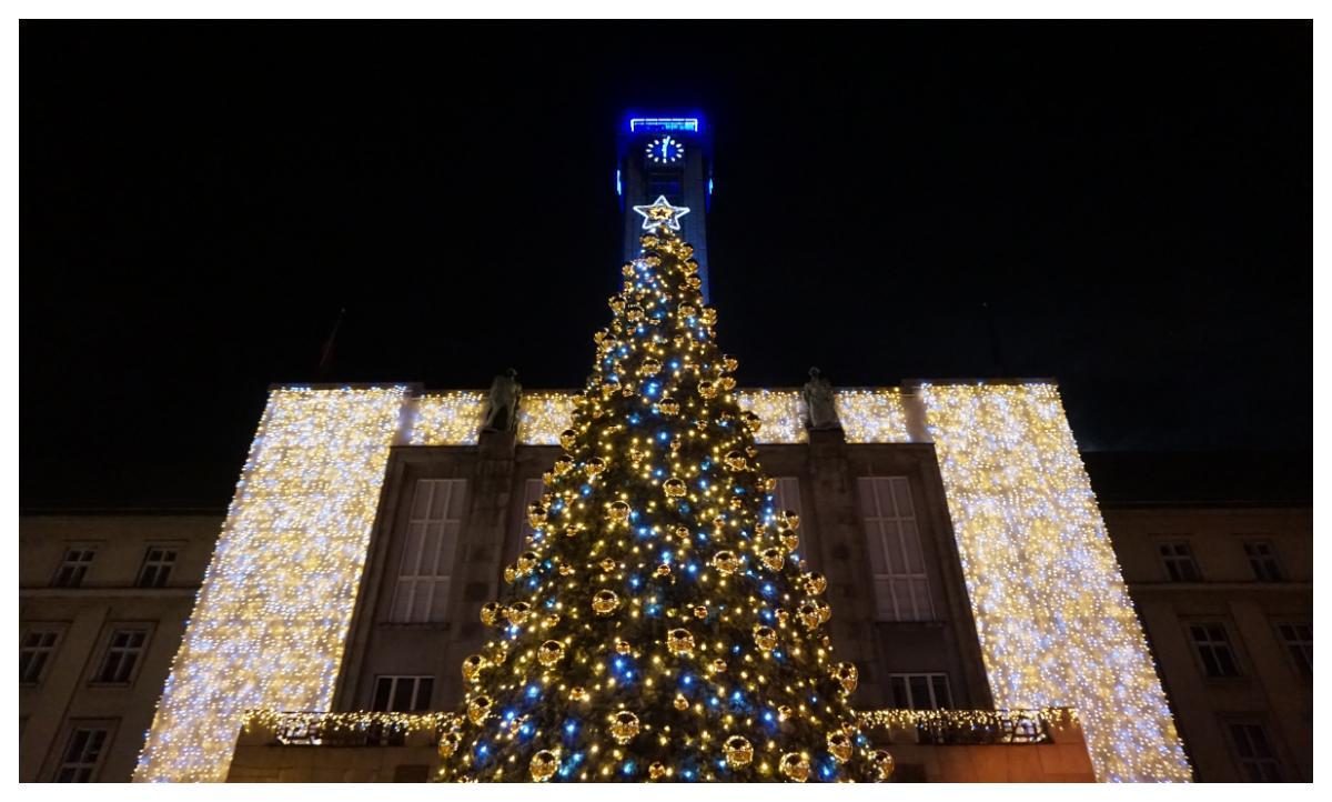 Hela julgranen ramas av ljus