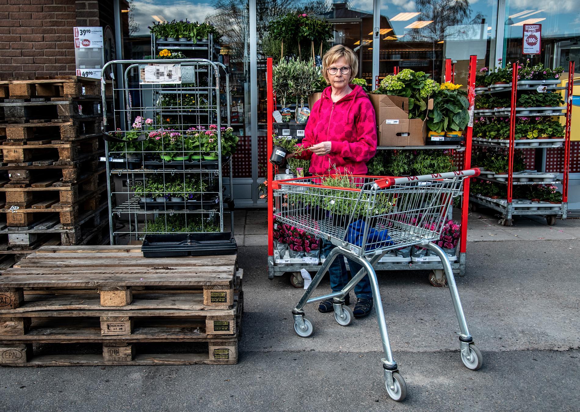 """Solveig Eskelinen handlar blommor på Ica Malmen i Pajala den 2 juni 2020. """"Alla tyckte det var jättejobbigt i början när gränsen stängdes. Jag brukade åka över och köpa finskt bröd och finska grönsaker."""""""