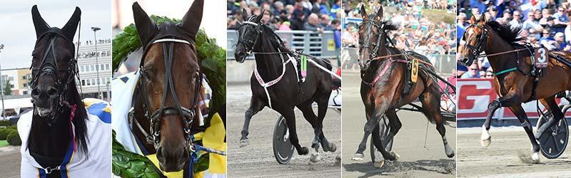 Tycoon Conway Hall, Propulsion, B.B.S.Sugarlight, Mosaique Face och Un Mec D´Heripre är fem av de åtta hästar som gör upp i storloppet Åby Stora Pris