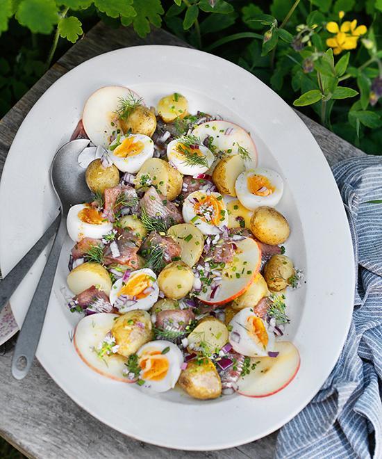 Blanda färskpotatisen med ägg , brynt smör, lök och färska kryddor och du får en somrig och god potatissallad.