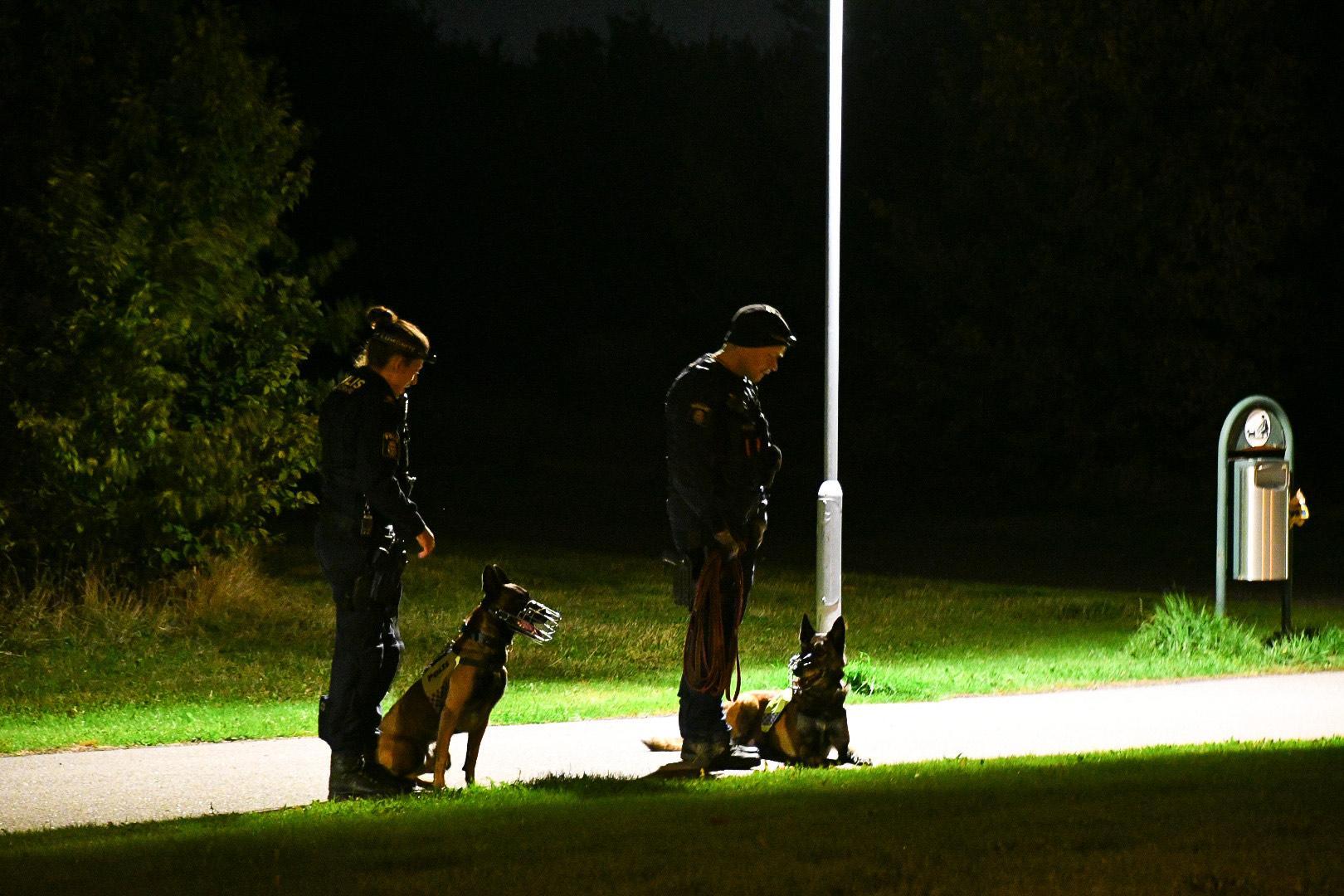 Hundpatruller deltog i sökandet efter Beata, 32, som försvann natten till lördag.