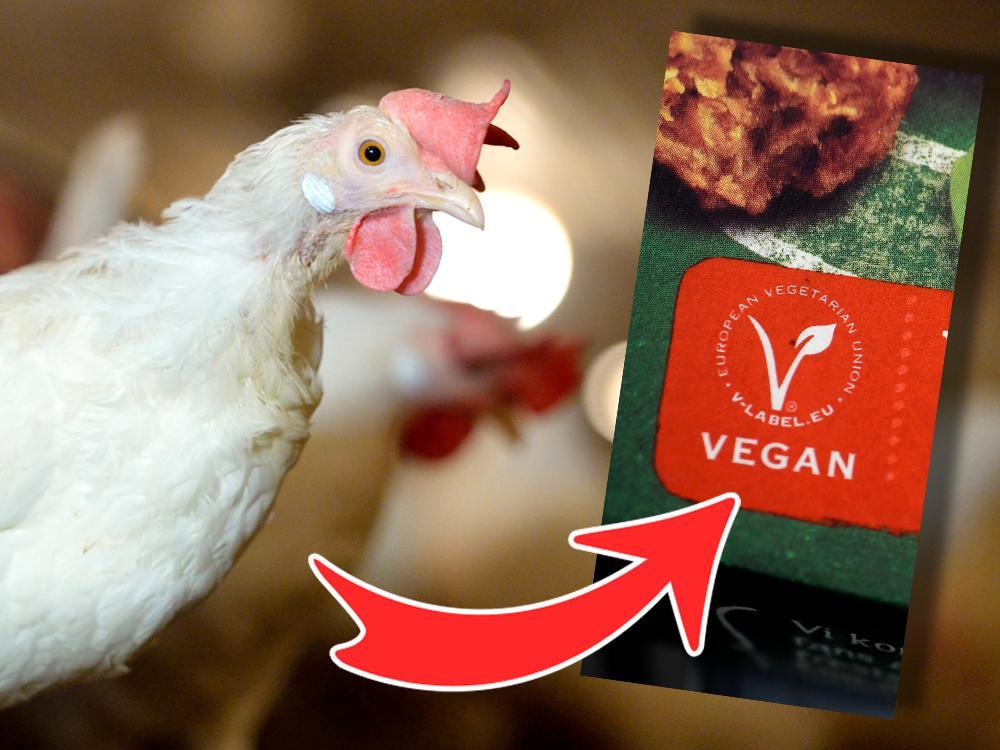 Veganmärkt mat garanterar inte att den är helt fri från animaliska inslag.