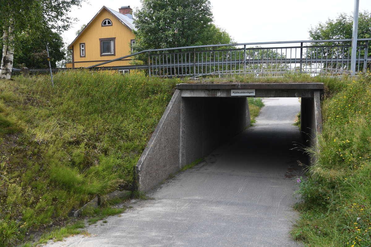 Enligt uppgifter till Aftonbladet hittades en pistol i gångtunneln.