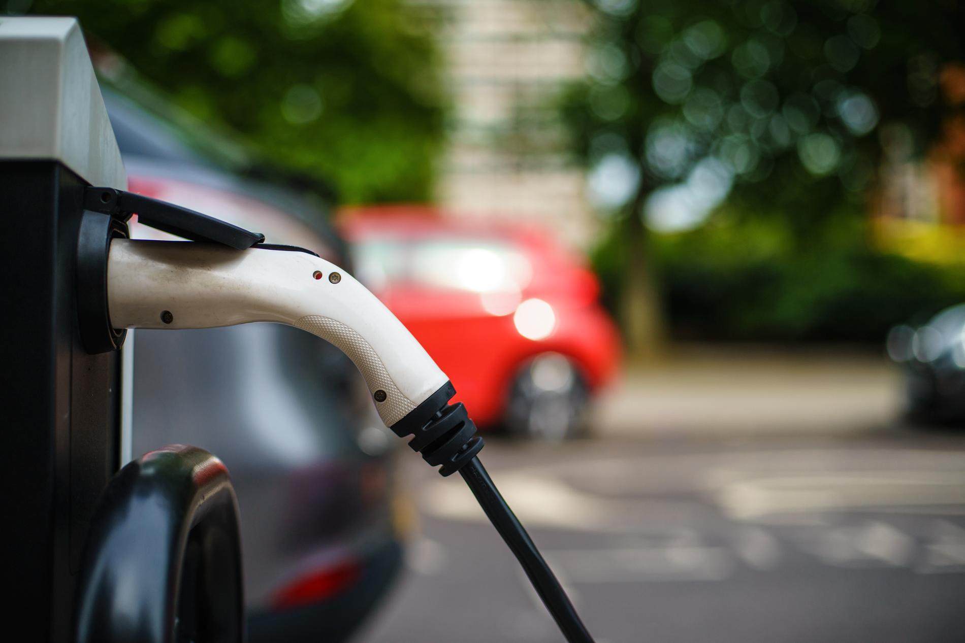 Att semestra med elbilen kommer att bli mer populärt, tror Lottie Knutson.