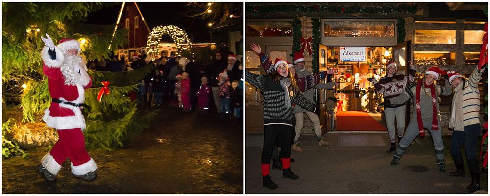 På Skånes djurpark får du en härlig julupplevelse bland tomtar och djur.