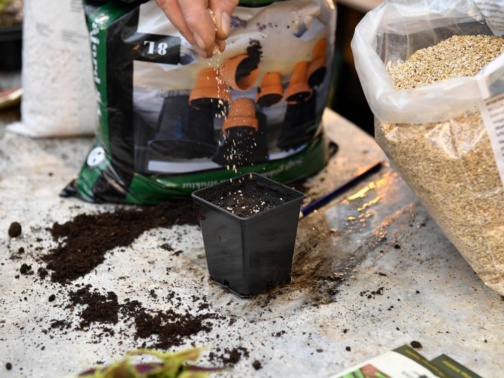 Strö över vermiculite så håller fukten bättre.