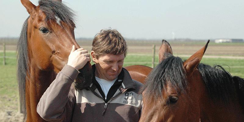 Holländske stortränaren Jeroen Engwerda skickar flera hästar till Sverige – bland annat på V75.