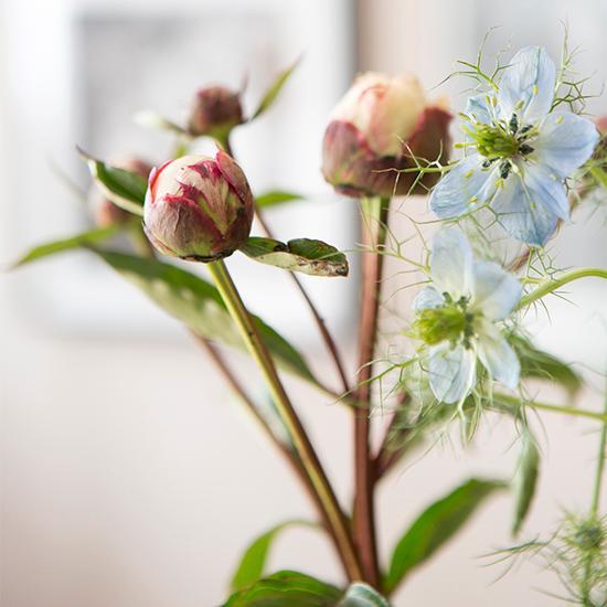 Hemma hos Joy hittar man små vaser med blommor i varje rum.
