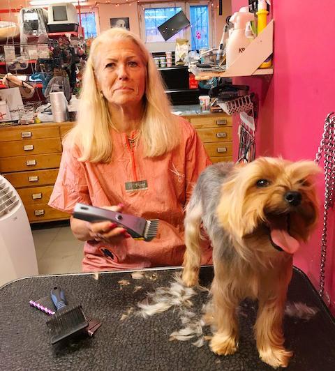 Berit har jobbat med djur i 48 år.