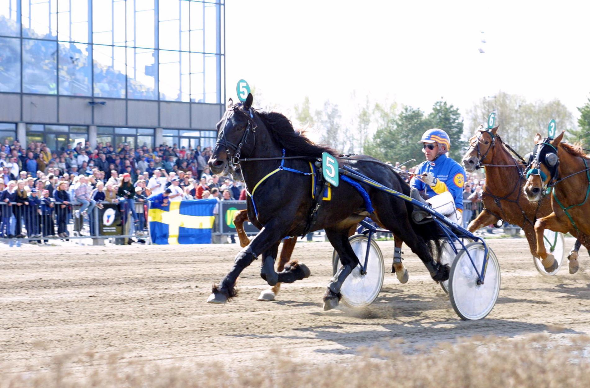 Järvsöfaks med tränaren och kusken Jan-Olov Persson.
