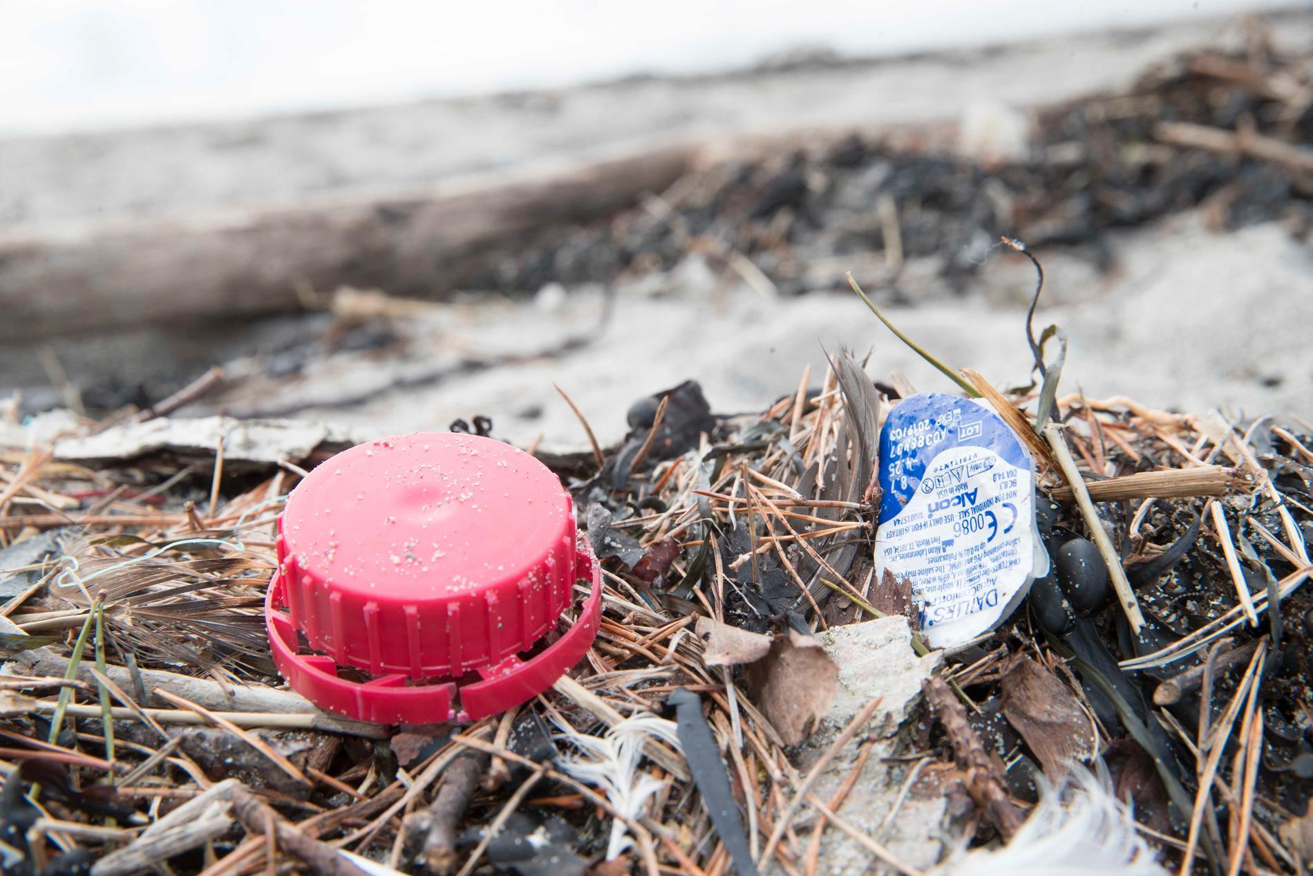 Flera ton skräp har tagits bort från Sveriges stränder. Arkivbild.