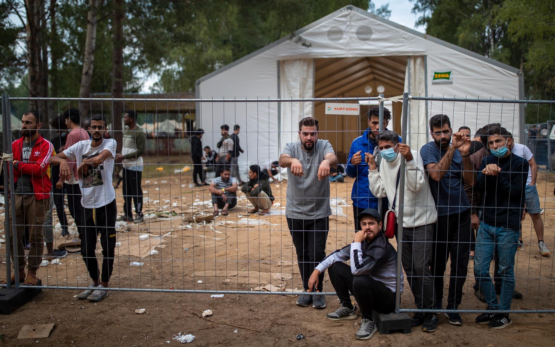Migranter vid staketet vid flyktinglägret i Rudninkai söder om Vilnius.