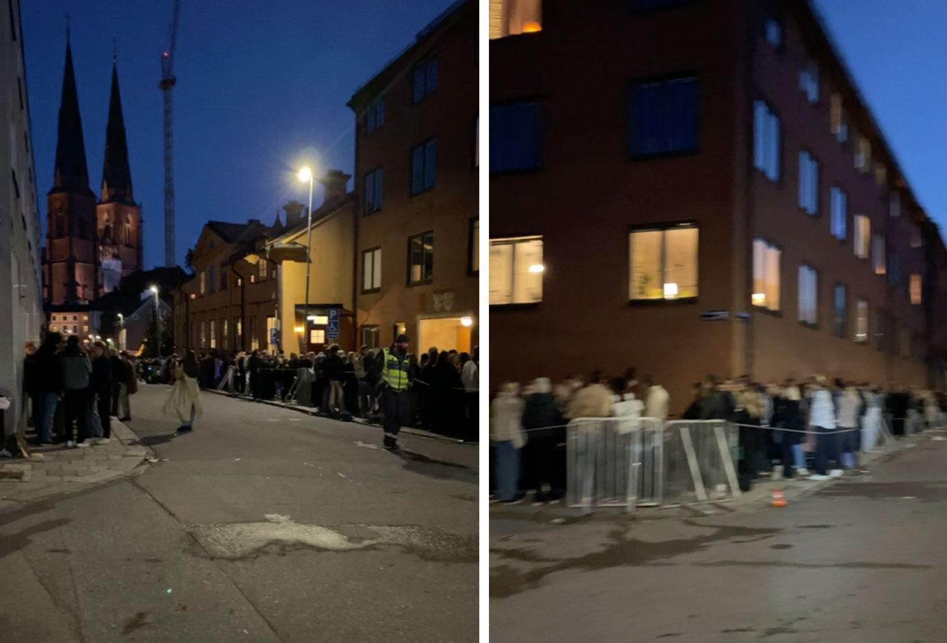 Köerna ringlade sig långa i Uppsalas nattliv.