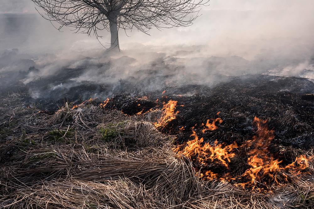 Se upp med valborgsbrasan. Faran för gräsbränder är just nu stor.