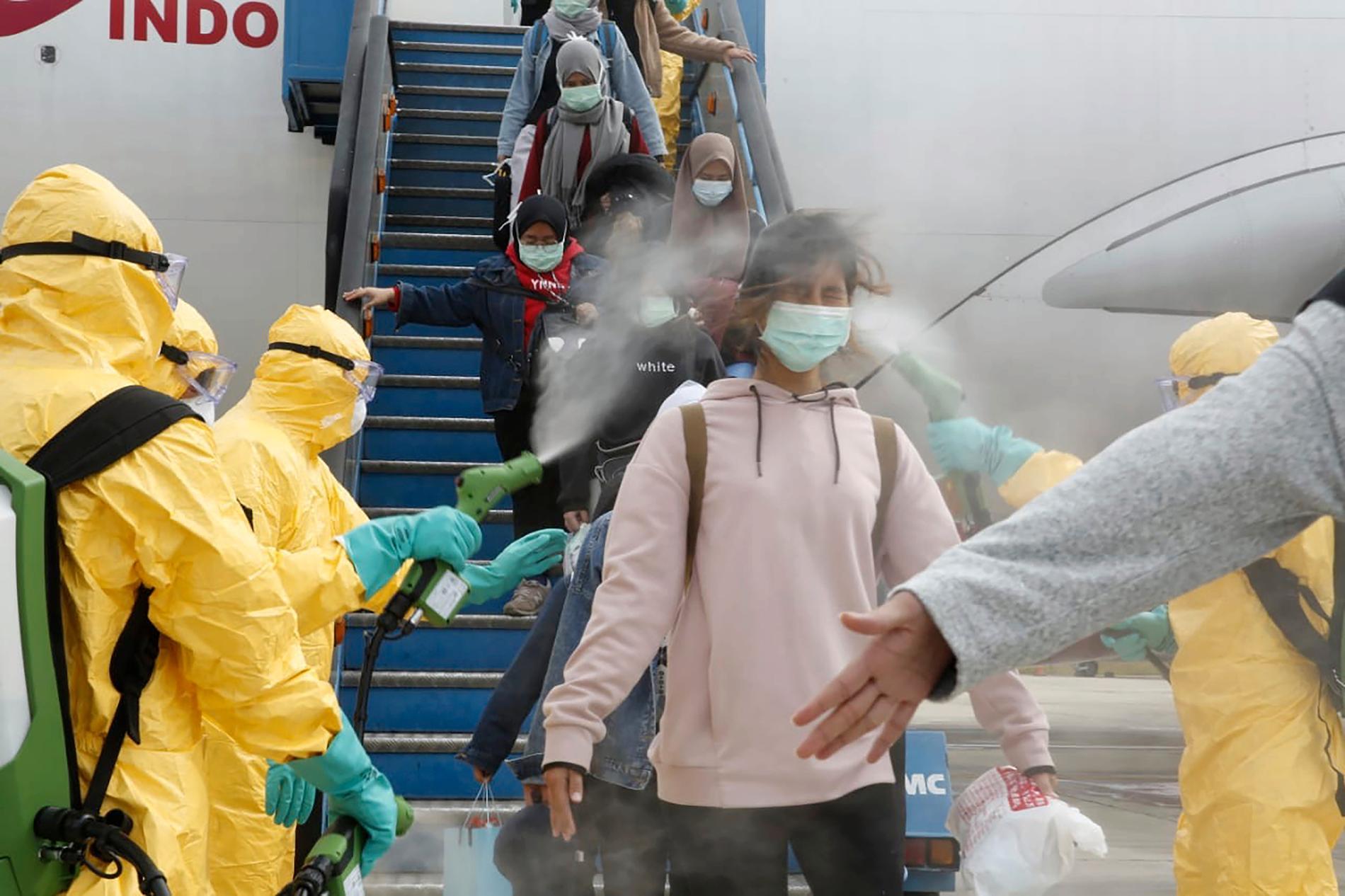 Det virus som nu riskerar att spridas över världen kommer ursprungligen från fladdermöss, visar forskning enligt uppgifter i tidskriften Nature.. På bilden passagerare i Indonesien som kliver av ett flyg från Kina.