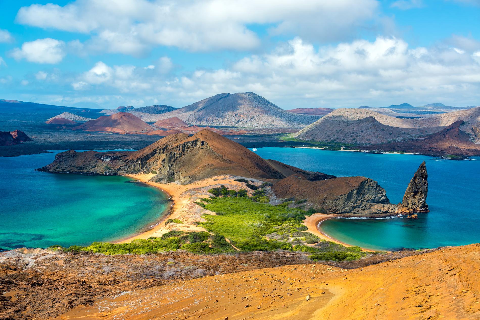 Galapagos är känt för sin unika natur, och sitt unika djurliv.