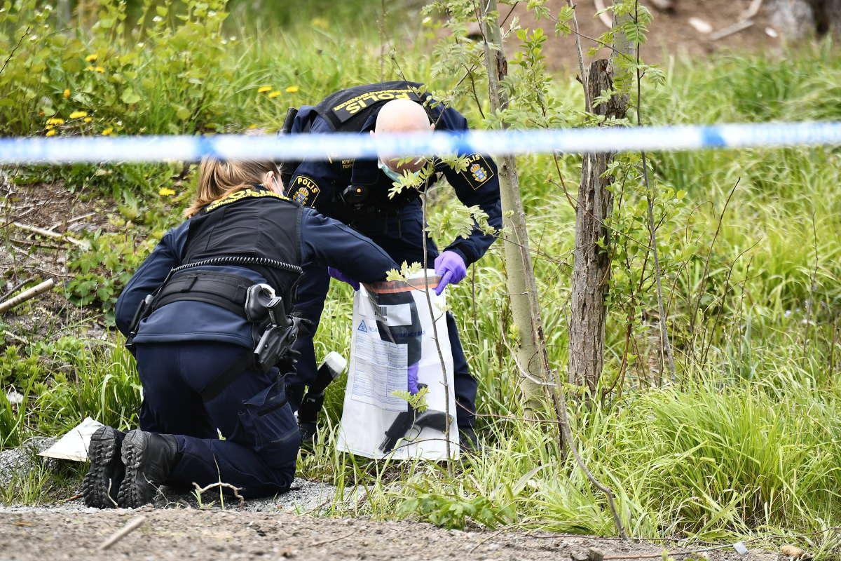 Polisens tekniker undersöker ett vapen som hittats i skogsdungen i kommundelen Viksjö.