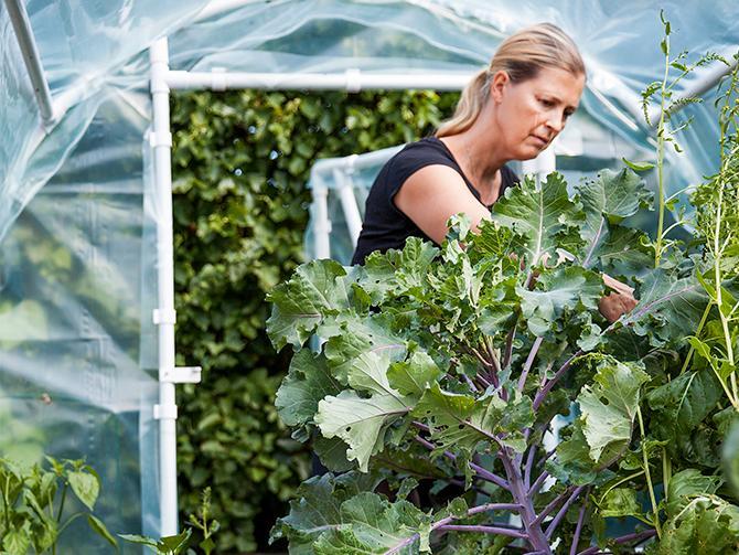 Gabriella försöker att äta grönsakerna när de skördas. Att äta utifrån säsong är en utmaning när vi är vana vid att allt alltid finns tillgängligt i mataffärens grönsaksdisk.