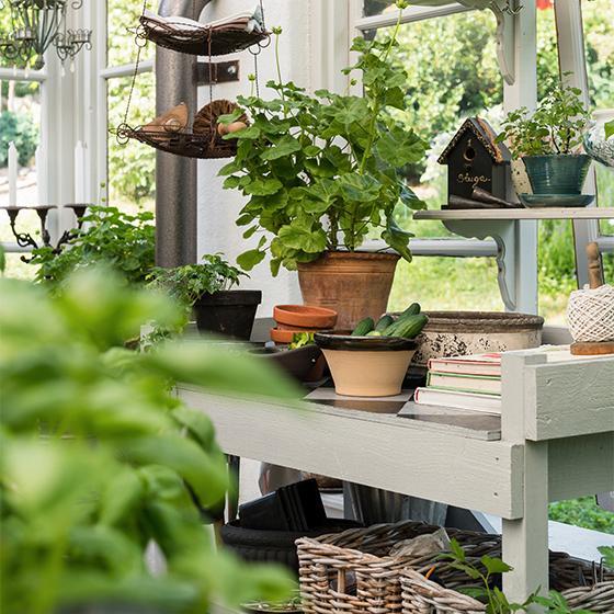 Odlingsbänken är byggd av lösvirke vilket gjort det möjligt att anpassa höjd och mått efter egna behov.