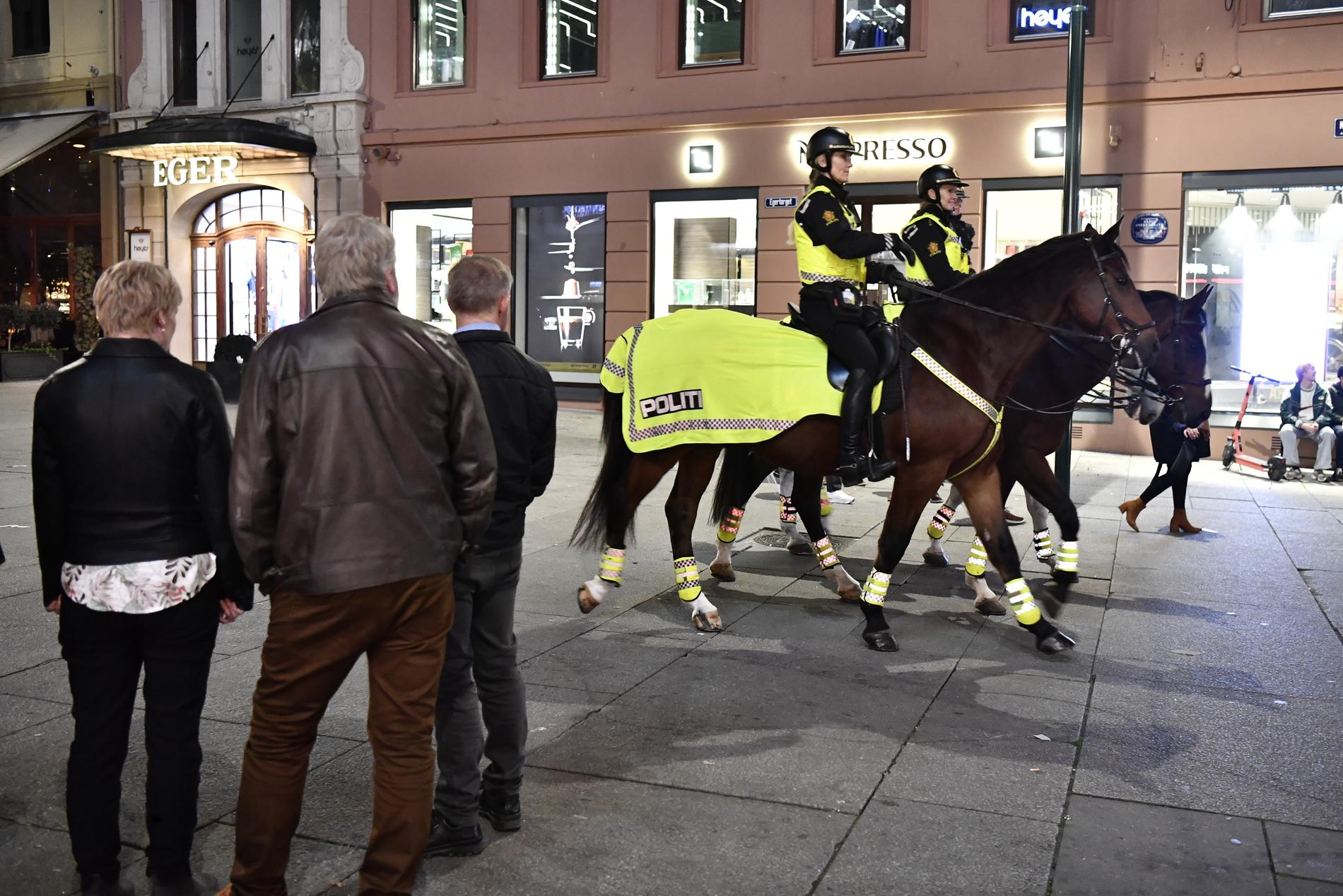 Oslopolisen hade omkring 200 ärenden.