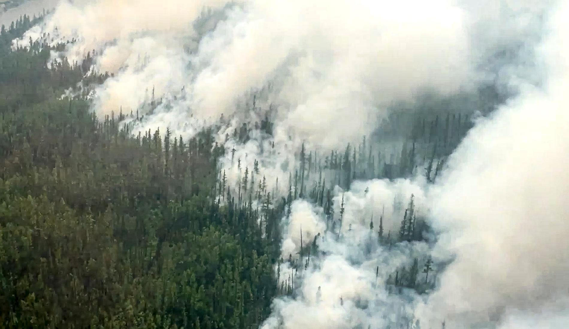 Skogsbränder i Ryssland.