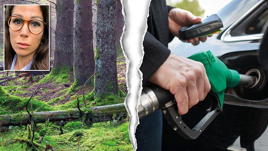 Att blanda in mer biodrivmedel i bilar och flygplan är förödande för klimatet och den biologiska mångfalden. Det är en dödsstöt för den svenska skogen som redan håller på att ta slut, skriver Lina Burnelius.