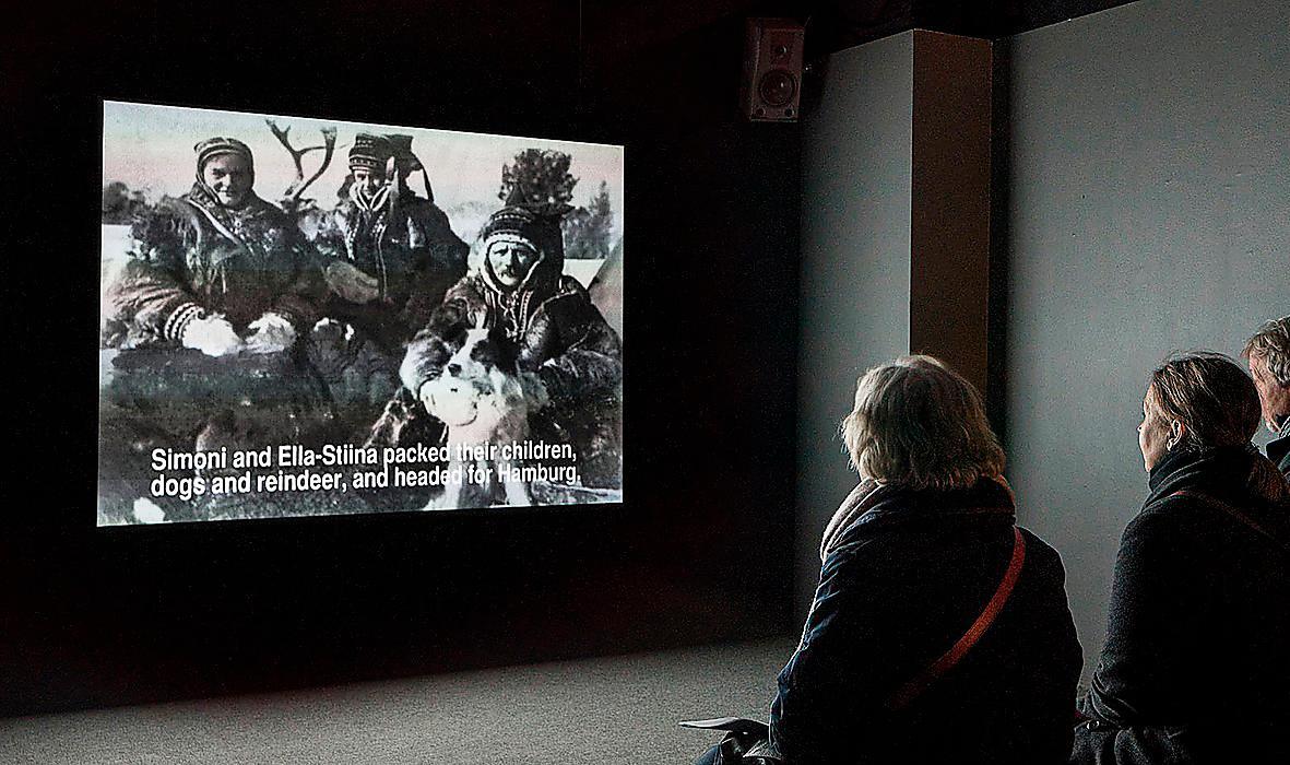 """Annika Dahlsten & Markku Laakso, """"Campfire in the Zoo"""", 2011, videoanimation."""