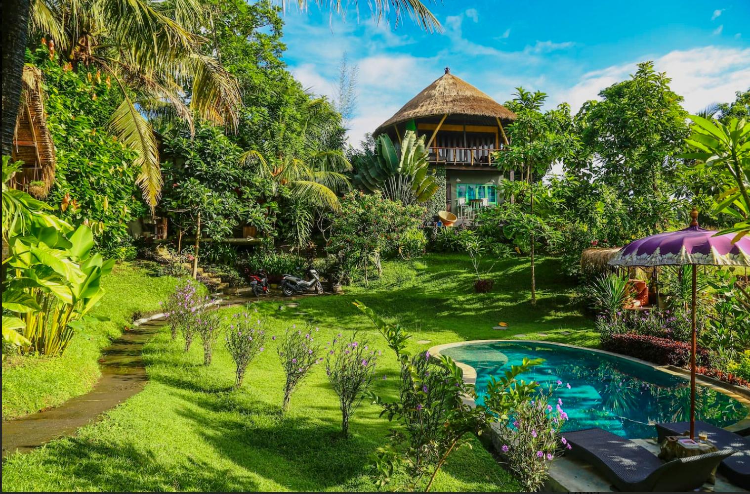 På Bali kan du hyra en trädkoja i djungeln.