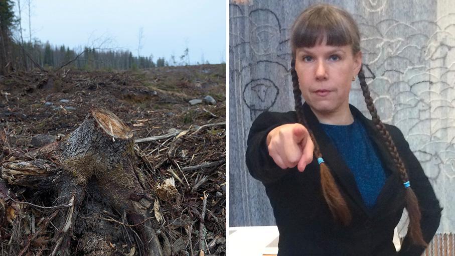 Vi kan rösta bort kyrkans kalhyggen om vi inte vill ha dom kvar. I nomineringsgruppen Himmel och jord vill vi självklart bevara alla gamla och skyddsvärda skogar. Resterande skogar ska vi bruka med hyggesfria metoder, skriver Ulrika Karlsson.