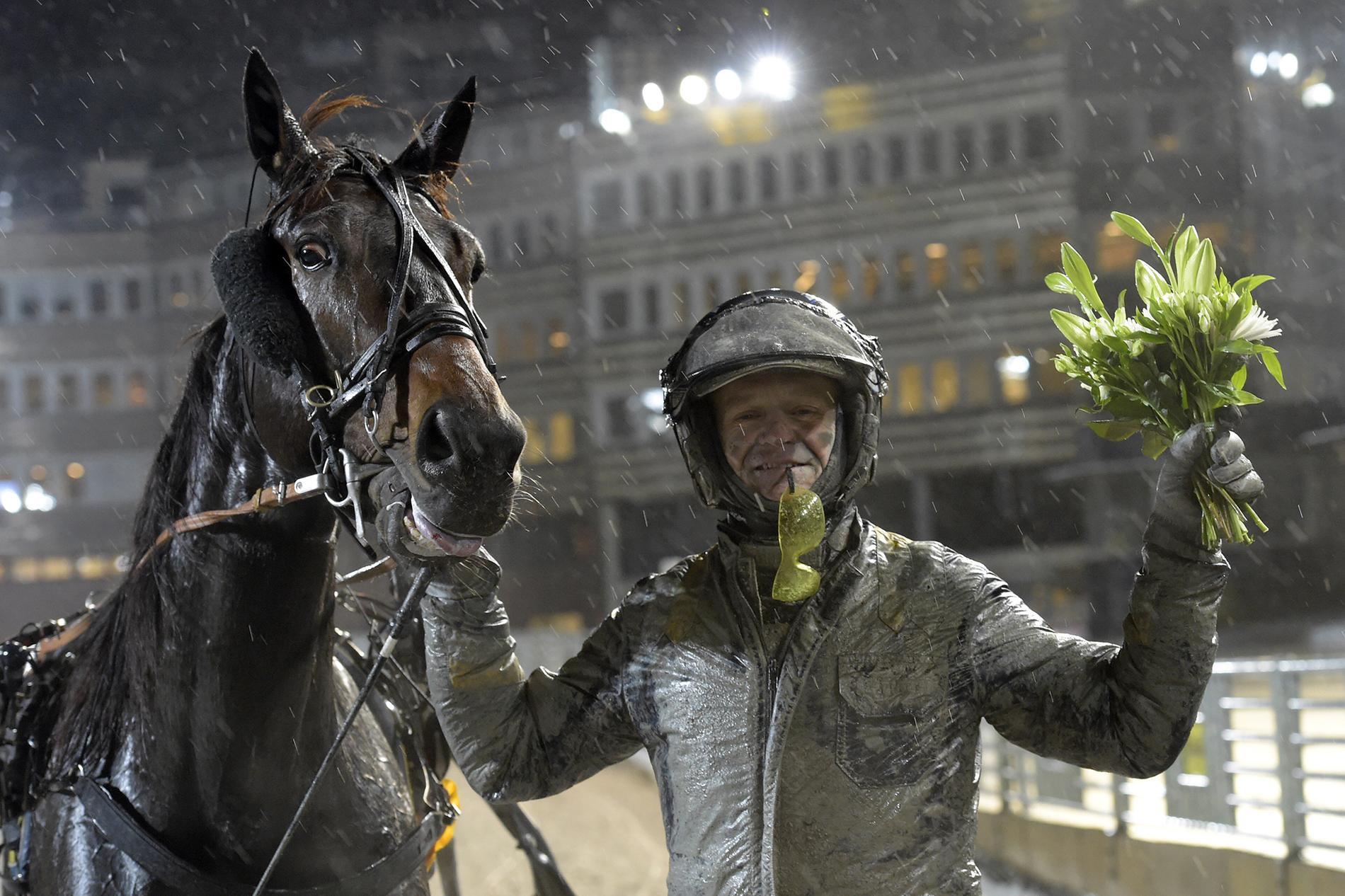 D.D.'s Perseverance tillsammans med Per Lennartsson. I kväll spikas hästen med Ulf Ohlsson som kusk.